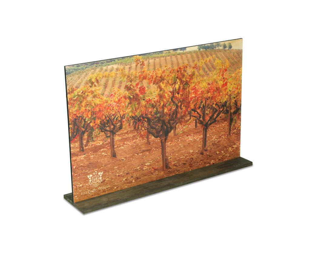 Fall Vineyard POP Displays